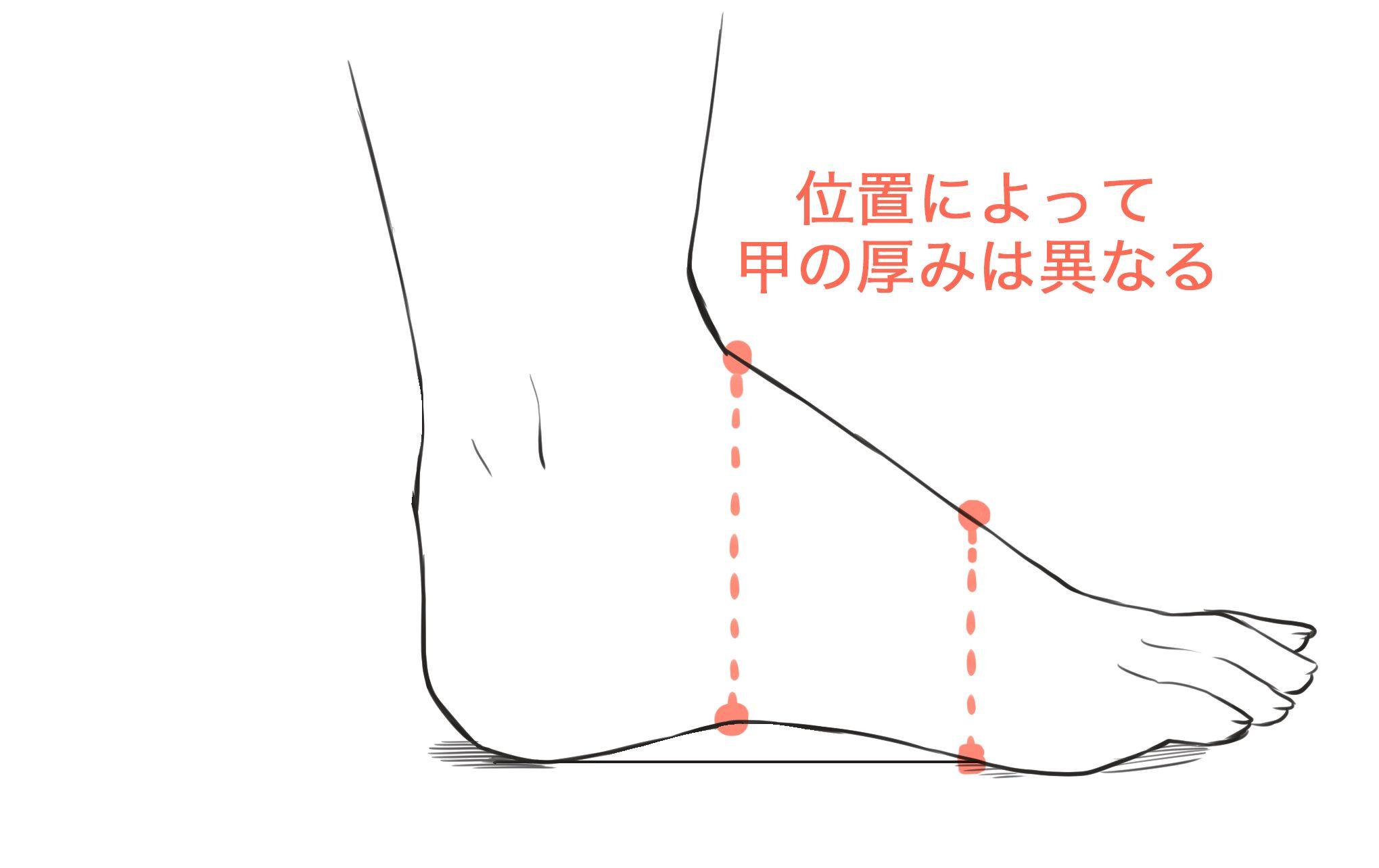 足の甲の厚み