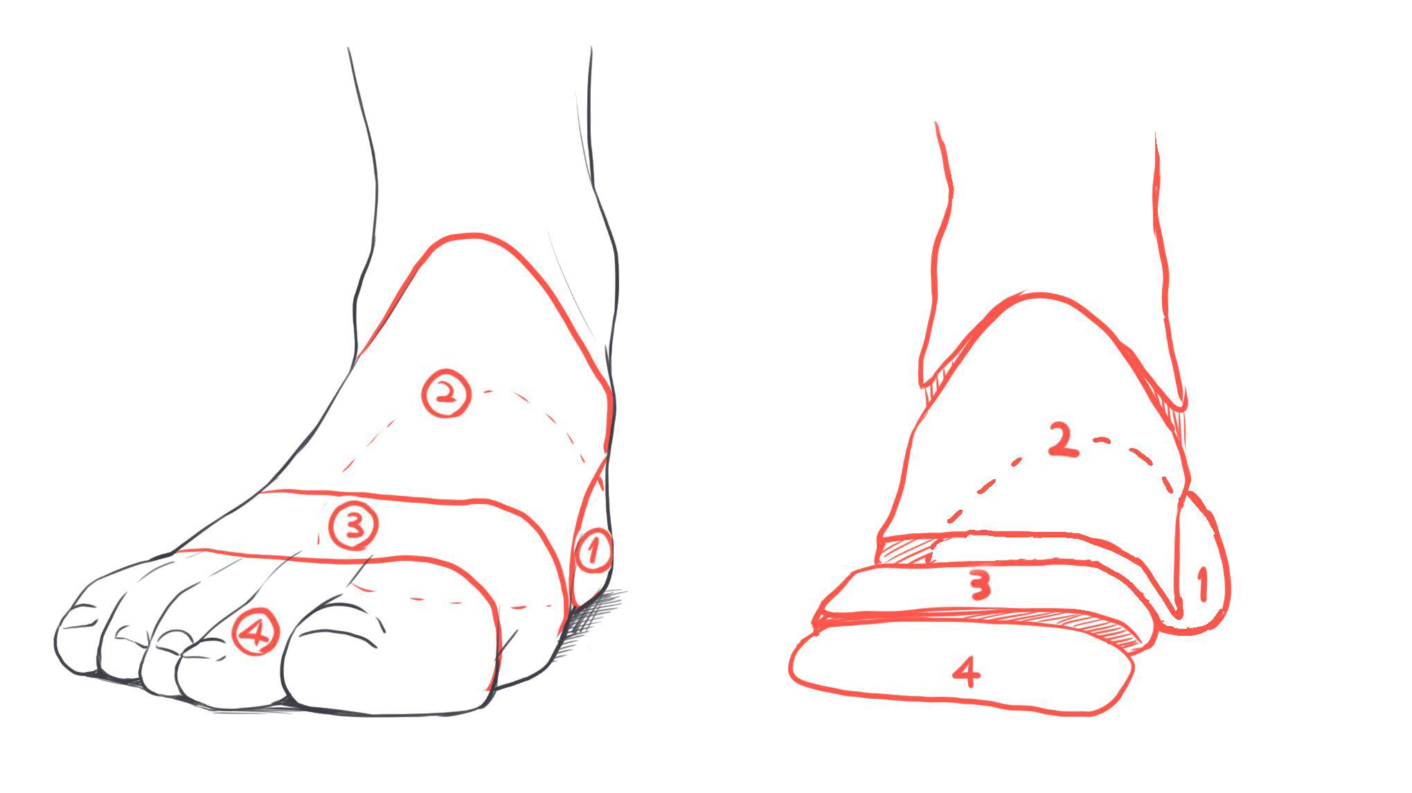 正面向きの足パーツ分け